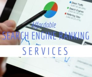 Search Engine Ranking Services